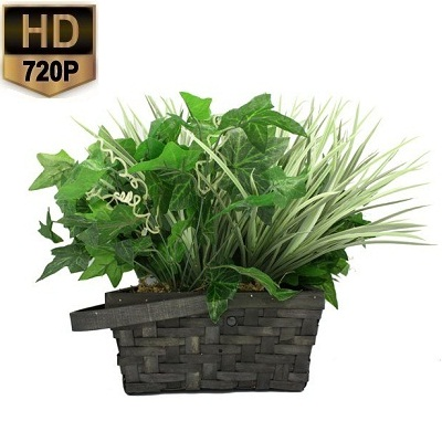 Plant Spy Camera 30 Dagen HD