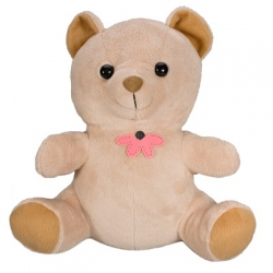 Teddybear Spy Camera 420TVL